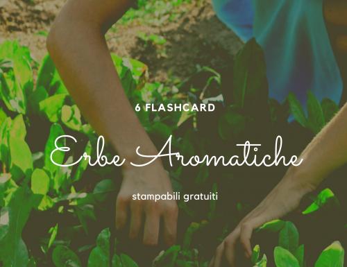 flashcard erbe aromatiche